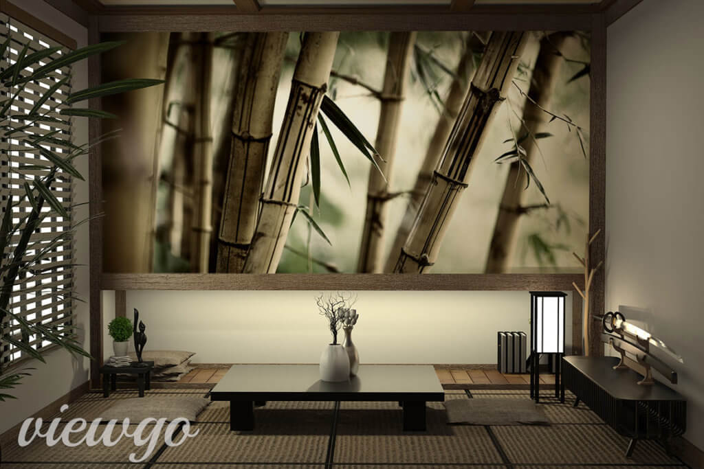Fototapeta - Japoński bambus - Viewgo