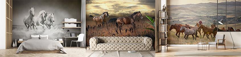 Uosobienie piękna i elegancji – Fototapety z końmi