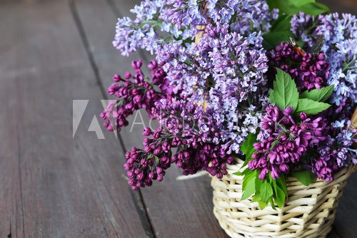 Fototapeta basket with  branch of lilac
