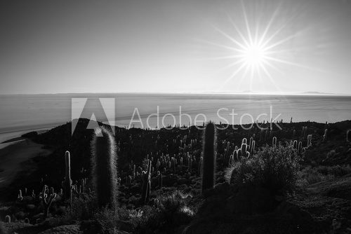 Fototapeta Black & white, sun star over Uyuni Salt Flat, Bolivia