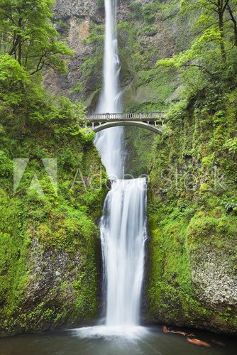 Fototapeta Multnomah Falls in the Columbia River Gorge, Oregon, USA
