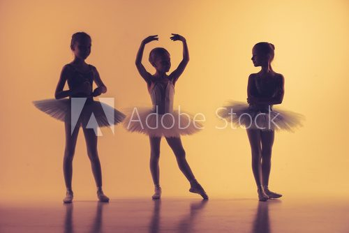Fototapeta Three little ballerinas in dance studio