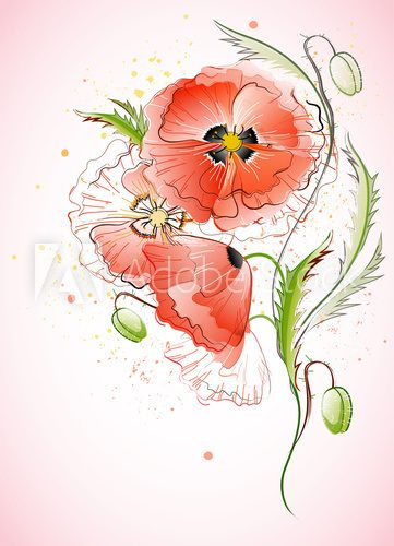 Fototapeta Vertical Background with Red Poppy