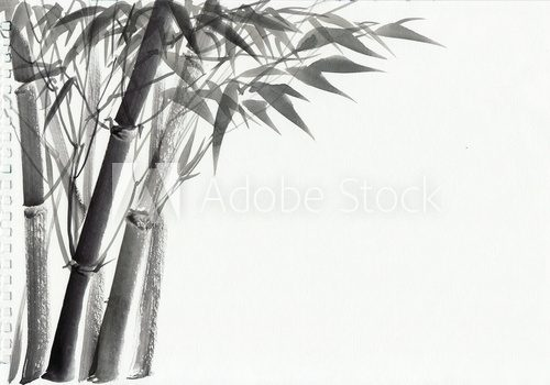 Fototapeta Watercolor painting of bamboo