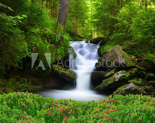 Fototapeta Waterfall in the national park Sumava-Czech Republic