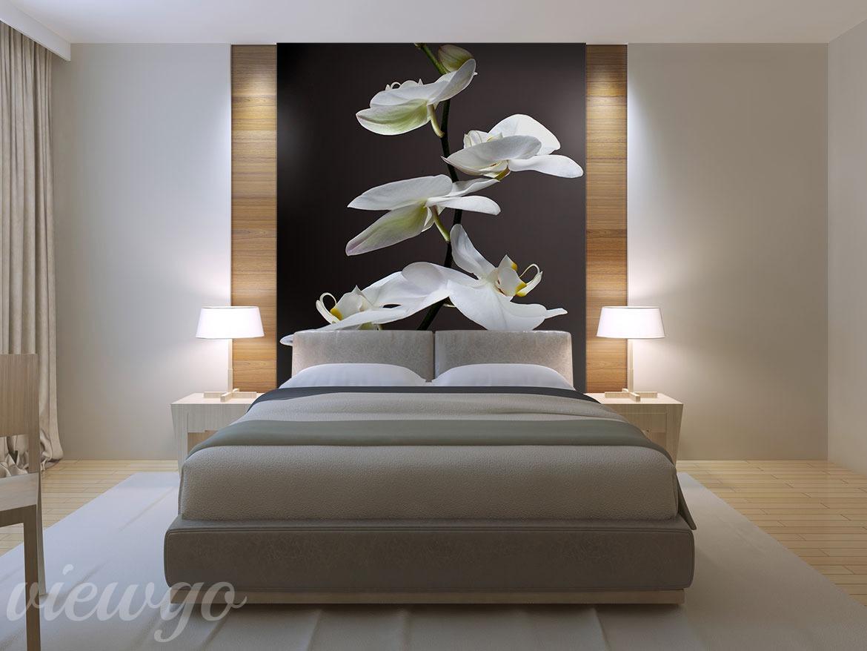 Kwiat Jednej Nocy Aranżacja Do Sypialni Fototapety Viewgo